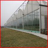 Estufa da película plástica da Multi-Extensão da exploração agrícola da agricultura para vegetais