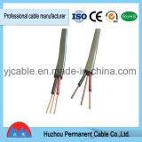 De PVC d'isolation jumeau à plat et câble électrique de la terre