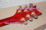 Fotorezeptoren reden an,/Mahagonikarosserie u. Stutzen,/Afanti elektrische Gitarre (APR-052)