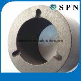 De radiale Magneet van het Ferriet van de Magnetisering voor Pomp