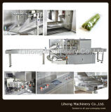 Tipo Almohada automática Vegetal Horizontal Flow Wrap máquina de embalaje (XZB250-ZB950)