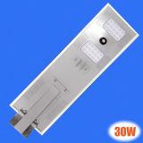 높은 루멘 Bridgelux 방수 30W LED 태양 가로등