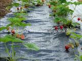 Mat van het Gras van de Controle van het Onkruid van de landbouw de pp Geweven