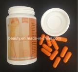 自然で健全なLidaの草の細くの食事療法の丸薬
