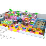 De binnen Apparatuur van de Speelplaats voor Kinderen en Jonge geitjes van 4-14 Jaar
