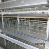Cage automatique de couche de rendement élevé de la production 2016 (ISO9001)