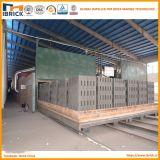 La Chine le projet automatique de four à tunnel de brique d'argile de modèle de Best Company avec une chambre plus sèche