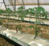 Bewässerung-Tropfenfänger-Pfeil