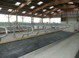 Couvre-tapis de verrouillage de cheval de vache enclenchant le couvre-tapis en caoutchouc en caoutchouc d'agriculture de couvre-tapis