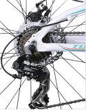 Vélo de montagne avec Shimano Derailleur et levier