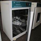 Incubateur électrothermique de la température continuelle de laboratoire