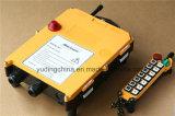 Gru a cavalletto resistente della trave di F21-14D la singola parte la ricevente senza fili del trasmettitore di telecomando