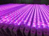 T8 파랗거나 빨강 LED 플랜트는 가벼운 관 220V LED 빛을 증가한다 램프를 증가한다
