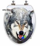 L'acier inoxydable articule les couvertures estampées colorées de siège des toilettes