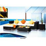 Conjunto al aire libre del sofá de los muebles del patio