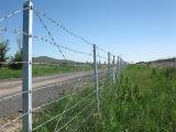 Road Fence를 위한 직류 전기를 통한 날카롭 철사 Fence