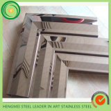Construction Building 304 Stainless Steel Mirror Frame pour Door Decoration