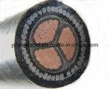 0.6/1kv N2xry Na2xry XLPE isolé et cable électrique de la SWA de Sheated