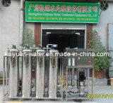Usine de traitement des eaux de boissons/système 2t/H traitement des eaux de boissons