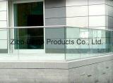 Glace de flotteur pour Sale/2440mm, 1830mm, 2134mm, 3300mm, 2250mm, 3660mm