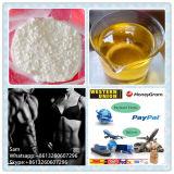 Kortison-Azetat-Steroid Puder mit konkurrenzfähigem Preis CAS50 -04-4