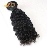 8Aブラジルのバージンの人間の毛髪のジェリーの卸し売りカールの人間の毛髪は編む