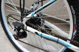 26 bicicleta elétrica da montanha da polegada 36V 250W, OEM (YK-EB-002)