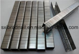 튼튼한 최신 판매 주문 금속 장식적인 U 유형 물림쇠