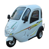 Un motorino elettrico delle 3 rotelle per la persona anziana