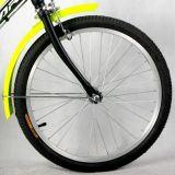 20 Zoll-heißer Verkaufs-elektrisches Fahrrad mit En15194