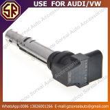 De AutoBobine van uitstekende kwaliteit van Delen voor Volkswagen 036 905 715e