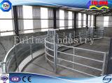 가축 안전 담 (SSW-H-004)에 고급 젖소 또는 가축 Headlock