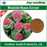 Het Uittreksel van het Poeder van de Wortel van Rhodiola Rosea van Salidroside