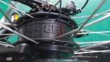 8-Fun Motor Folding e Bike с 20 Inch Tire