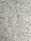 G603 de Lichtgrijze Tegel van het Graniet voor Bevloering