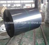 Black Froid-roulé par perfection Annealed Steel dans Coils