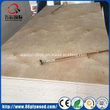 Muebles grado UV de chapa de madera de abedul de 18 mm de contrachapado