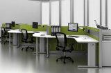 6 Sitznetter Kindergarten-grüne Arbeitsarbeitsplatz-Partition (SZ-WS73)