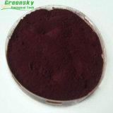 Extracto de la fruta del arándano de Greensky con el 10% - el 70% PAC