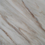 Galaxy White Marble Slab Marble Price