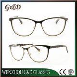 Bâti optique Tb3862 de monocle de lunetterie en verre en métal de qualité