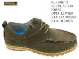 No 48805 ботинки людей вскользь Stock