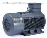 motore a corrente alternata Asincrono a tre fasi del motore del motore elettrico 160kw