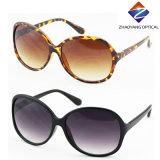 Frauen-heiße verkaufenrahmen-Plastiksonnenbrillen