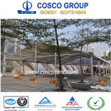 最上質の熱い販売のCosco展覧会のテント