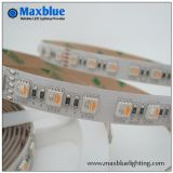 60/72/84/96 luz de tira de LEDs/M 4colors RGBW LED