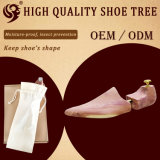 Bois populaire d'arbre de chaussure de mode de qualité