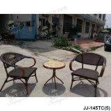 Garten-Möbel, im Freienmöbel (JJ-145TC)