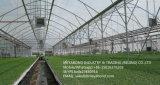 Réseau 100% d'insecte de HDPE de Meyabond anti