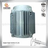 OEM het Omhulsel van de Motor van het Afgietsel van de Matrijs van het Aluminium van de Delen van het Afgietsel van de Matrijs